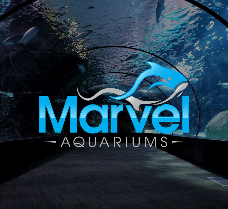 Marvel Aquariums